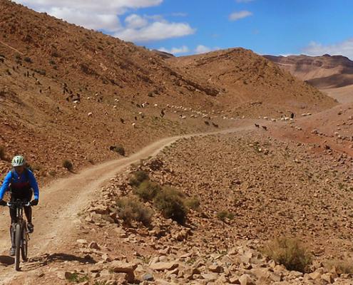 Gargantas do Atlas e Jbel Saghro - Caminhos da Natureza