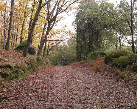 Os Melhores Trilhos do Minho - Caminhos da Natureza
